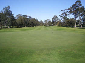 Maffra Golf Club Logo and Images