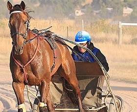 Ballarat & District Trotting Club Logo and Images