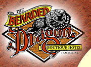 The Bearded Dragon Hotel Logo and Images