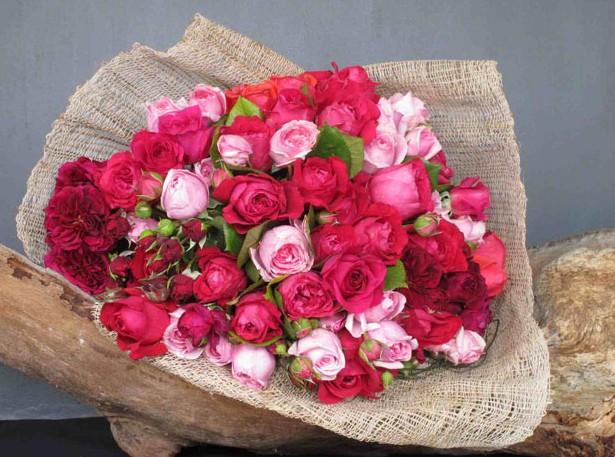 Wild Lotus Florist Newport Flower Sydney