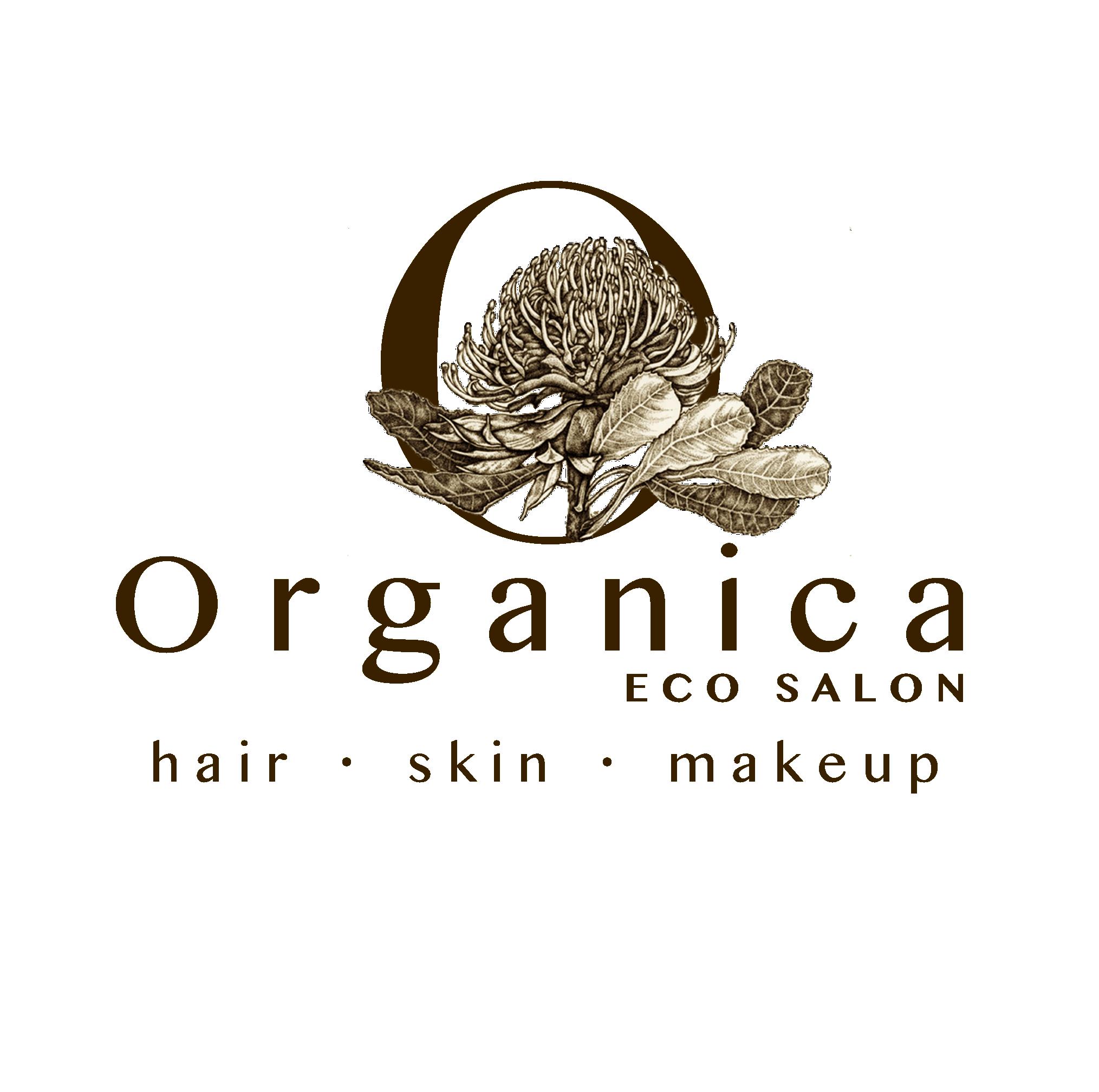 Brandon Park Barber Shop Logo and Images