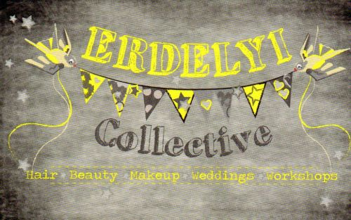 Erdelyi Collective Logo and Images