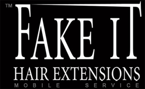 Fake It Hair Extensions