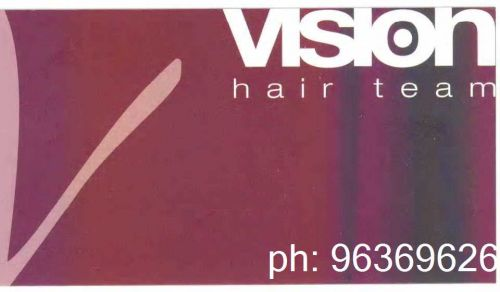 Vision Hair Team Logo and Images