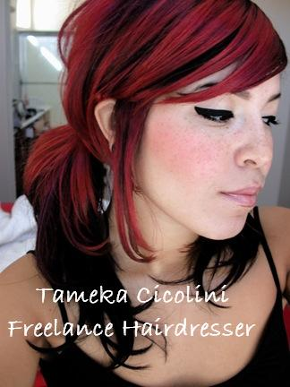 Tameka's Hairdressing-Mobile Hairdresser Logo and Images