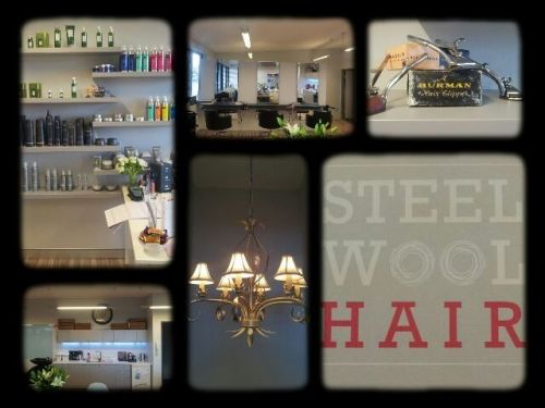 Steel Wool Hair Logo and Images