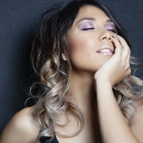 Janet Stace Hair and Makeup Artist Logo and Images