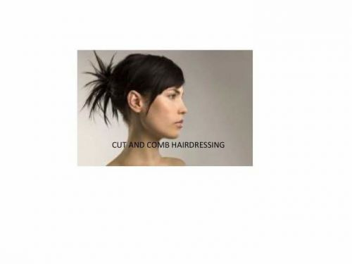 Cut & Comb Hairdressing Logo and Images