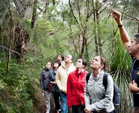 Bushwacker Ecotours Image