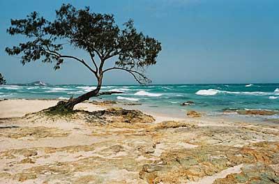 Australia See Moreton Island Tours Image