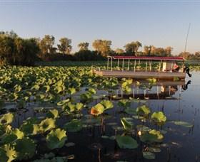 Wetland Cruises Image