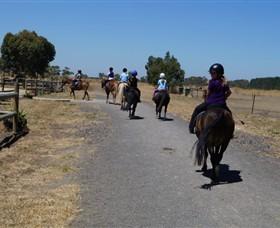 Saddle On Riding School Image