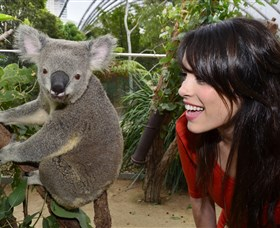 WILD LIFE Sydney Zoo Image