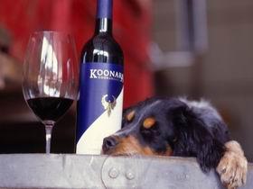 Koonara Wines Image