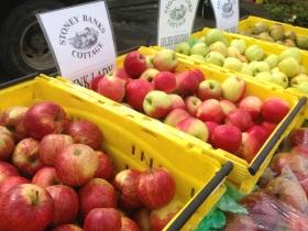 Huonville Market Tasmania Image