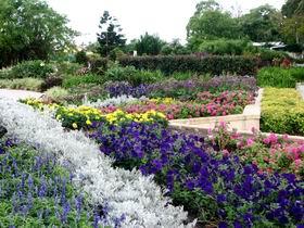 Gold Coast Regional Botanic Gardens Image