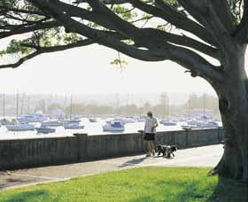 Sydney Harbour Circle Walk Image