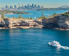 Fantasea Cruising Sydney Image