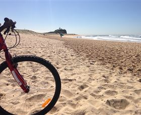 Newcastle Bicycle Tours Image