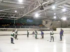 Ice Arena Image