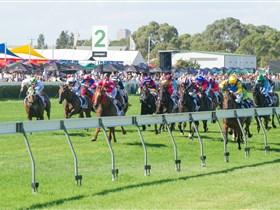 Morphettville Racecourse Image