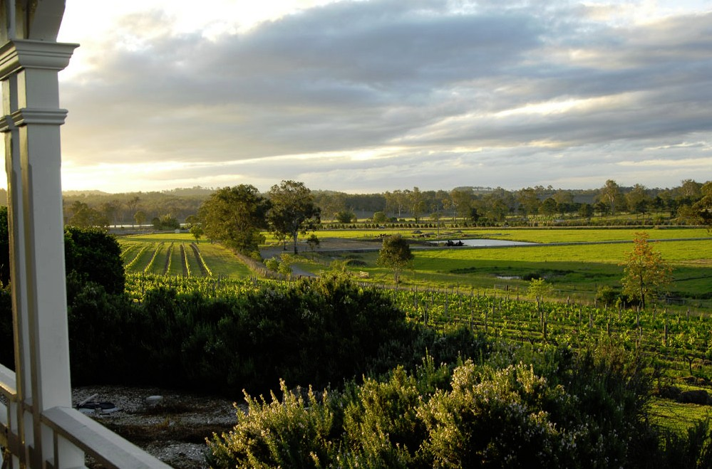 Albert River Wines Image