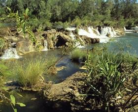 Flora River Nature Park Image