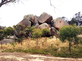 Mount Boothby Conservation Park Image