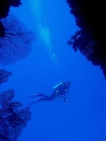 Drop Zone Dive Site Image