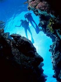 Caves and Canyons Dive Site Image