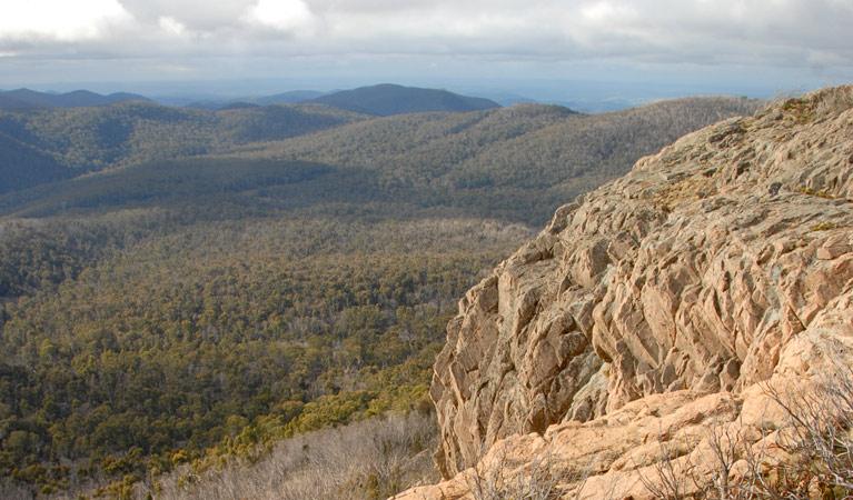 Brindabella National Park Image