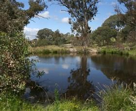 Cooleman Ridge Image