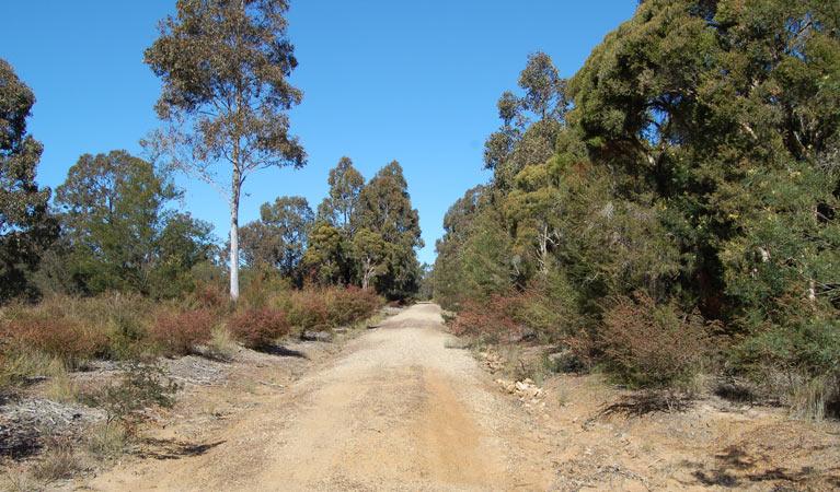 Werakata National Park Image