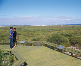 South Bay Image