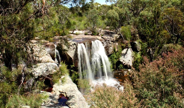 Maddens Falls Image