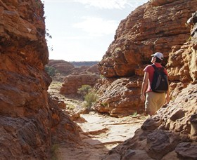 Watarrka National Park (Kings Canyon) Image