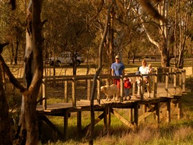 Loxton's Drives, Walks and Trails Image