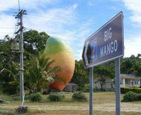 Big Mango Image