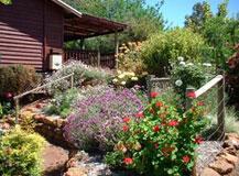 Chestnut Brook Cottage