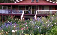 Rose Patch Bed and Breakfast