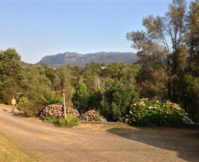 Rosebery Cabin and Tourist Park