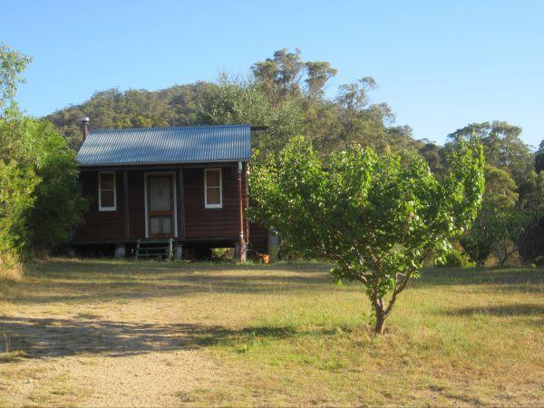 Peach Tree Cabin