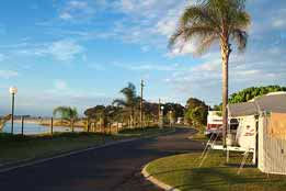 Cotton Tree Holiday Park Logo and Images