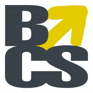 BCS Super Auditors Logo and Images