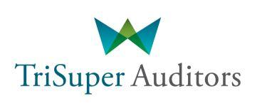 TriSuper Auditors