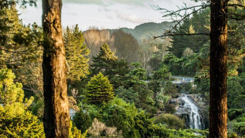 The Falls Retreat