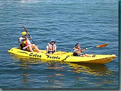 Manly Kayaks Logo and Images