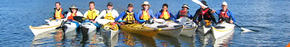 Sydney Harbour Kayaks Logo and Images