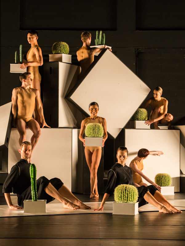 Sydney Dance Company Logo and Images