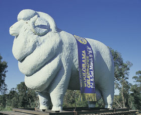 Giant Ram Tourist Park Logo and Images